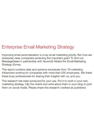 Enterprise Email Marketing Strategy