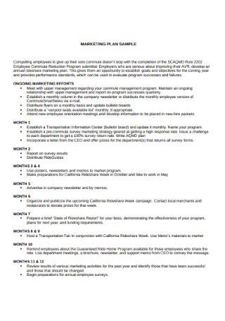 Formal Marketing Plan Sample