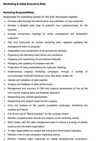 Marketing Sales Excutive