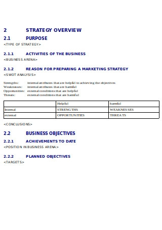 Marketing Strategy Document