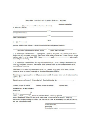 Minor Child Power of Attorney Delegated for Parental Power