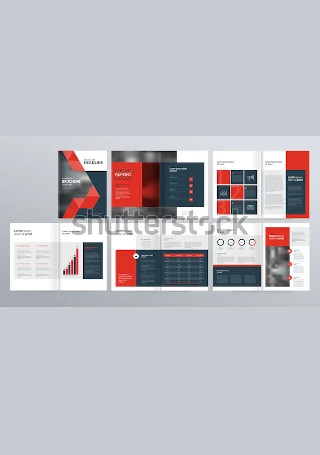 Modern Company Brochure InDesign