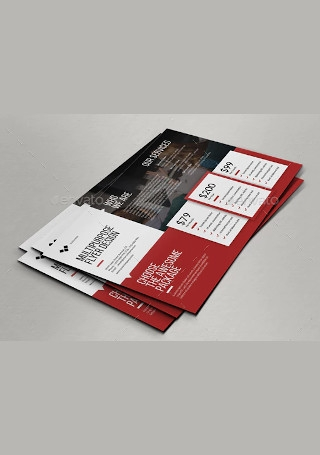 Multipurpose Flyer Price InDesign
