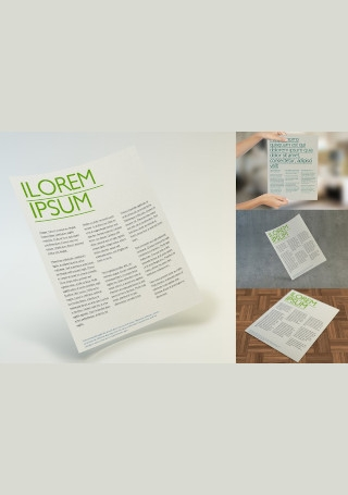 Multipurpose Letter Flyer