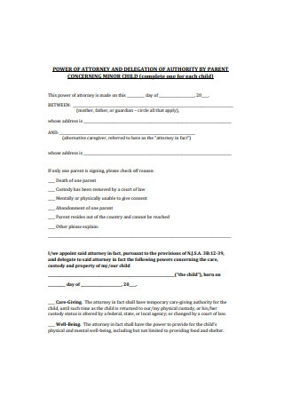 Power of Attorney and Delegation of Authority by Parent Concerning Minor Child