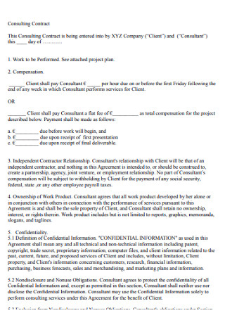 Professional Consulting Contract