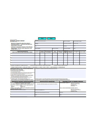Property Survey Report Example