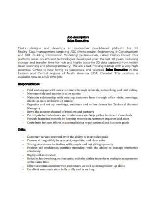 Sales Executive Resume Cover Letter