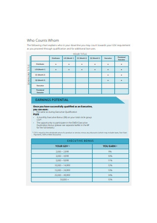 Sales Organisation Plans