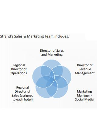 Sales and Marketing Program Plan