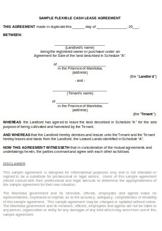 Sample Flexible Cash Lease Agreement