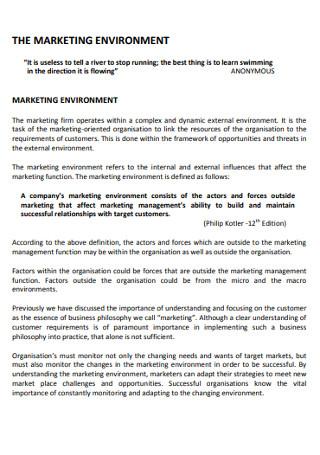 Sample Marketing Environment