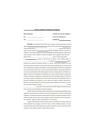 Special Medical Power of Attorney for Minor Child
