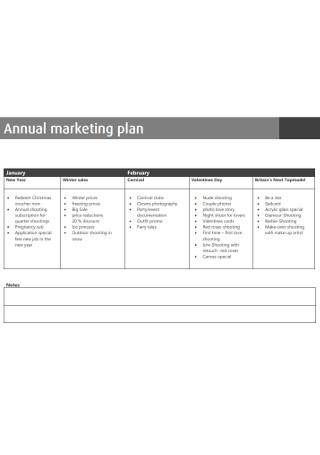Standard Annual Marketing Plan