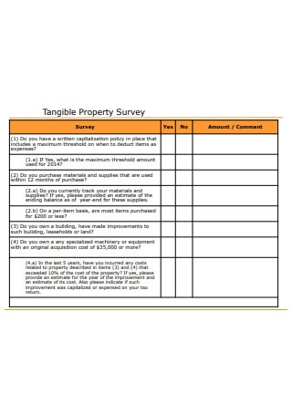 Tangible Property Survey