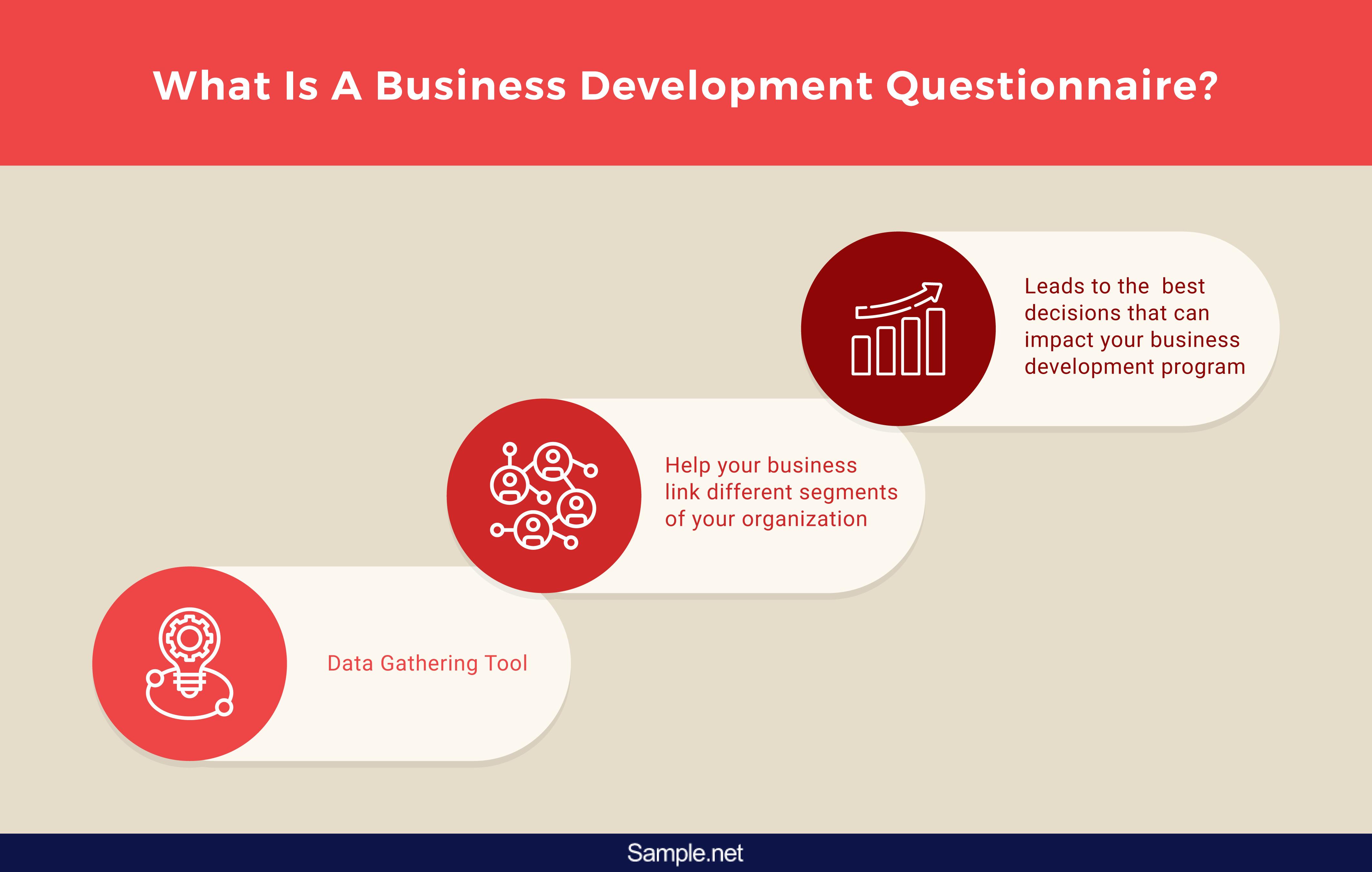 infographics-business-development-questionnaires-1-01