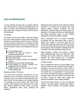 Annual Business Marketing Sales Plan