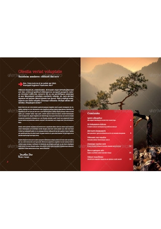 Business Brochure Report