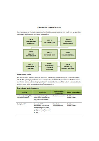 Commercial Sales Proposal Process