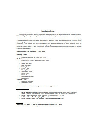 Corporate Business Introduction Letter
