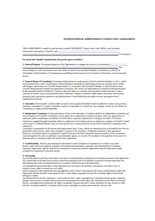 International Independent Contractor Agreement Format