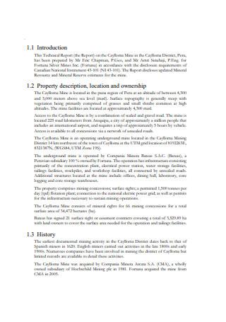 Mine Technical Report