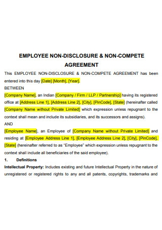 Printable Employee Non Disclosure Non Compete Agreement