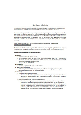 Sample Lab Report Submission