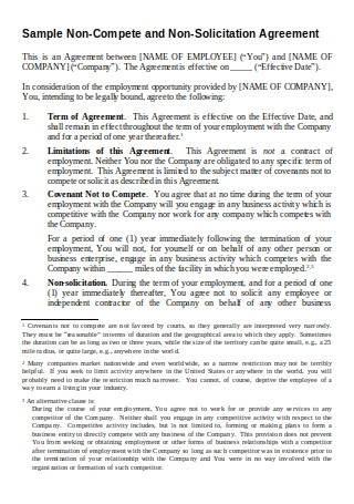 Sample Non Compete and Non Solicitation Agreement