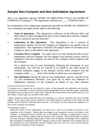 Sample Non Compete and Non Solicitation Agreement1