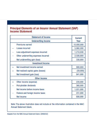 Annual Income Statement Elements