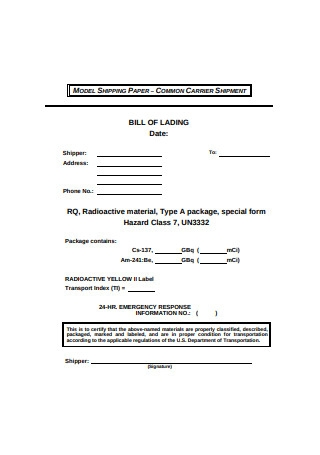 Basic Bill of Lading Form Example