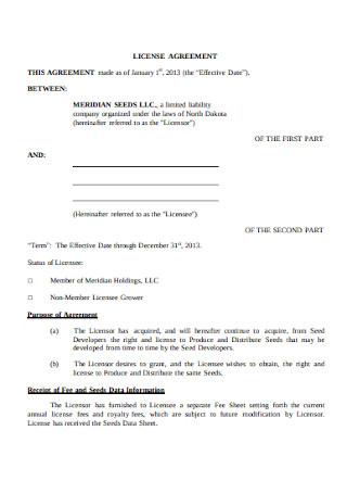 Basic Company License Agreement