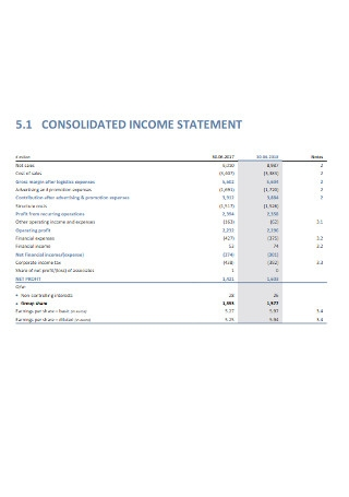 Basic Income Statement
