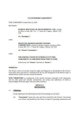 Co Ownership Agreement Format