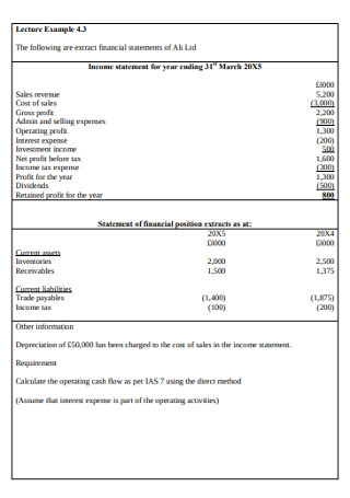 Company Cash Flow Statement