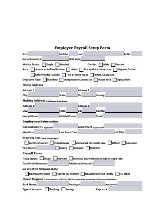 Employee Payroll Setup Form