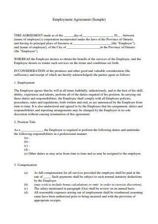 Employment Agreement Example