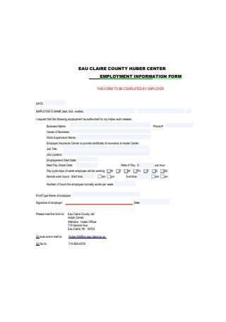 Formal Employment Information Form