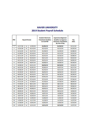 Formal Student Payroll Schedule Example