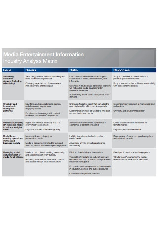 Industry Analysis Matrix