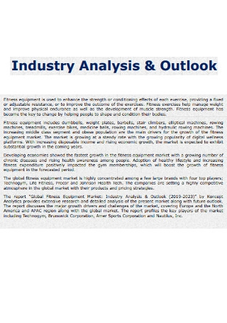 Industry Analysis and Outlook