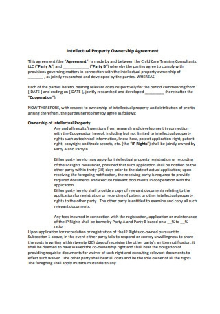 Intellectual Property Ownership Agreement Format