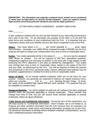 Letter Employment Agreement