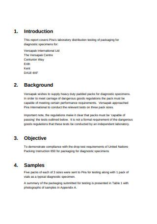 Logistics Consulting Report