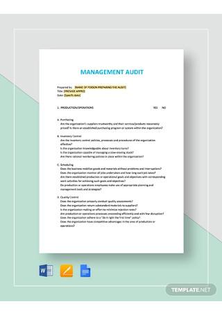Management Audit Checklist Template