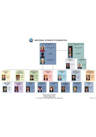 NSF Organizational Chart