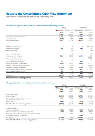 Notes to the Consolidated Cash Flow Statement