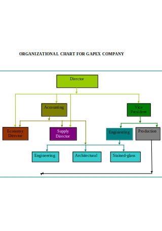 Organizational Chart for Company