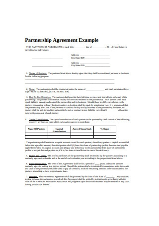 Partnership Agreement Example